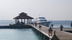 马尔代夫娱乐-椰子岛/库鲁巴岛