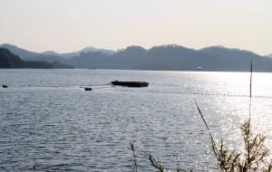 千岛湖娱乐-钓鱼岛
