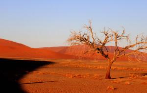 【纳米比亚图片】异域的纳米国    惊艳的红沙漠(连载完)