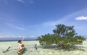【马尼拉图片】【菲律宾13日游】跨年之旅💜(马尼拉-薄荷潜水ow-杜马盖地鲸鲨-Apo岛海龟-墨宝沙丁鱼风暴