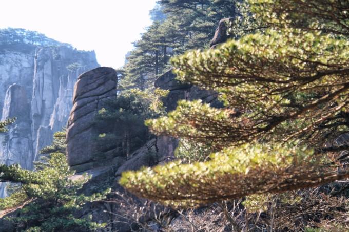 """""""猴子观海""""也是黄山风景区的标志性景点之一."""