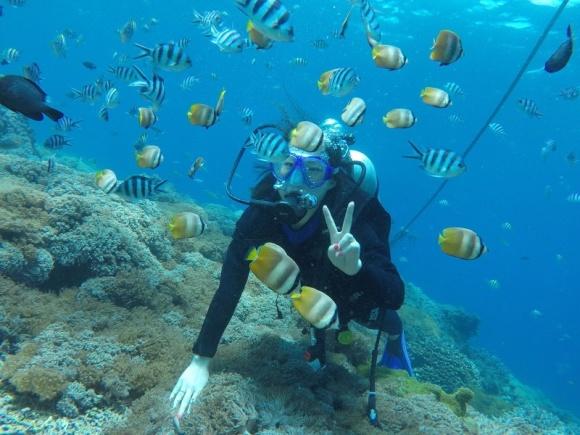 【巴厘岛潜水精选】蓝梦岛深潜一日游 图蓝本沉船潜水