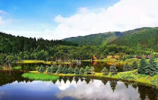 香格里拉虎跳峡风景区 普达措国家森林公园 独克宗古城等0自费2日游