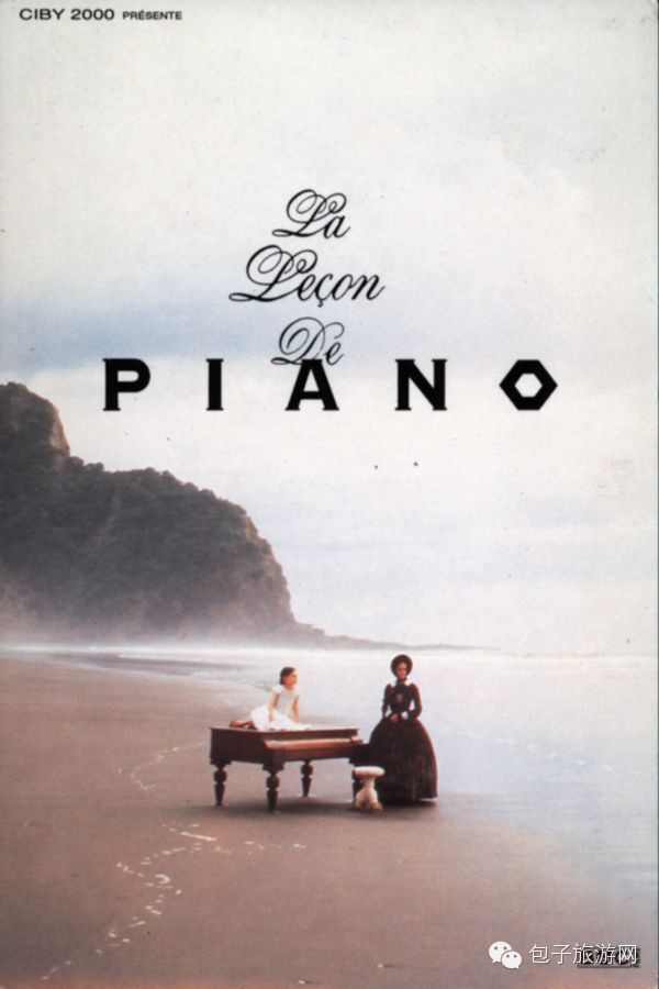 一,《钢琴课》