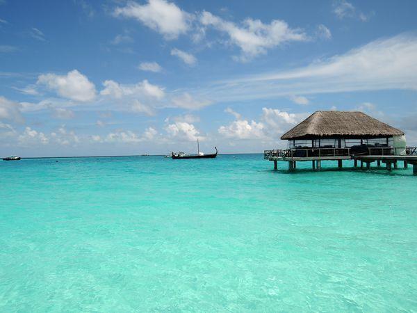 梦幻蜜月,在维拉沙鲁岛的那些天 Velassaru Maldives游记 毛里求斯游图片