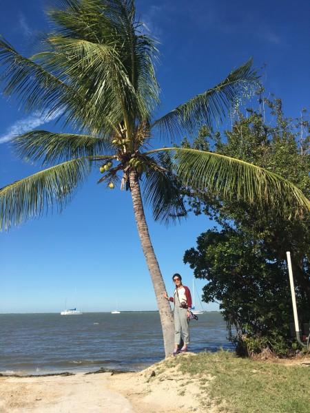 2017伊始 弗罗里达迈阿密,key west,奥兰多