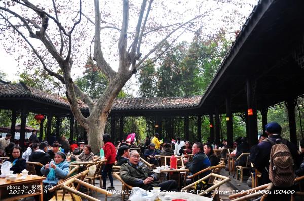鹤鸣茶社的建筑和走廊凉亭都是最传统的