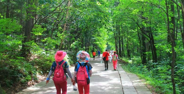 兴安国家森林公园 ---- 伊春避暑休闲4
