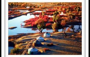 【尉犁图片】十几年前,尉犁罗布人村寨的胡杨林
