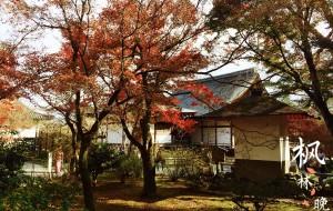 【下吕温泉图片】日本大阪神户京都姬路八日之旅