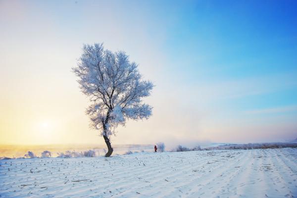 去东北,看雪啊!