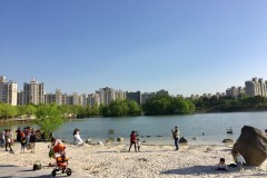 上海大宁公园游记