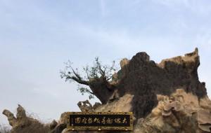 【洪洞图片】一个人的随心之行(四)——寻根,洪洞大槐树(春节自驾,京-晋-陕-豫-鲁)