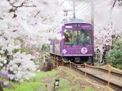 Osaka Local Tour] Osaka Day Tour _ Tickets _ Car Rental
