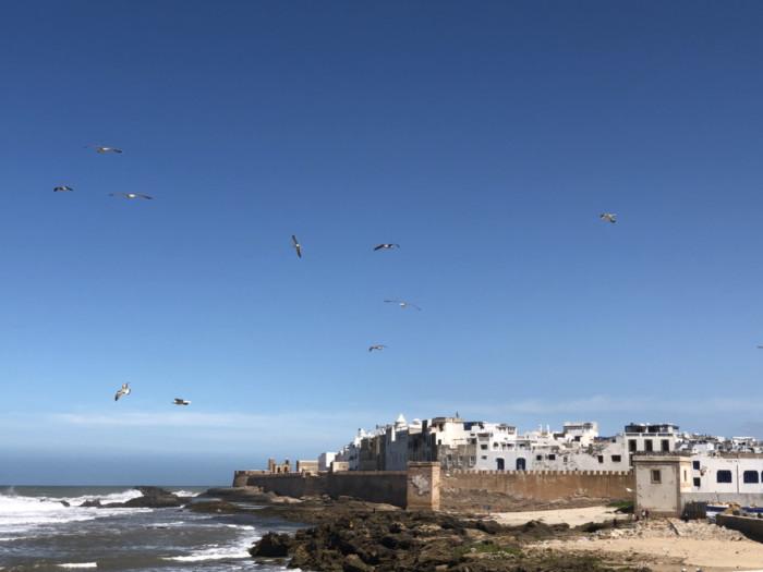 打算8月初去摩洛哥,不知天气能热到什么程度?