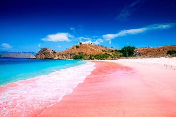科莫多岛是印尼东努沙登加拉省的岛屿,位于松巴哇岛和弗洛勒斯岛之间