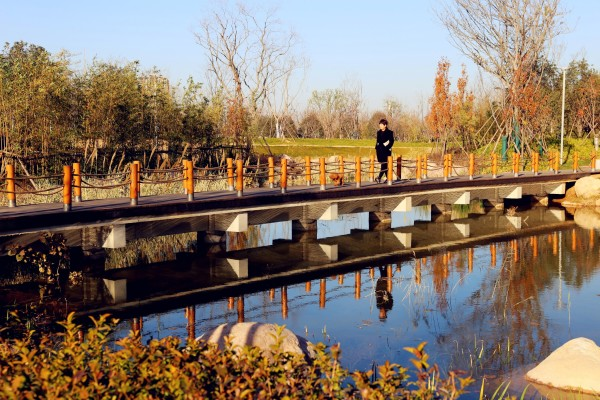 """你要的""""鹤""""式比心,请查收!——双鹤湖中央公园水与城的故事"""