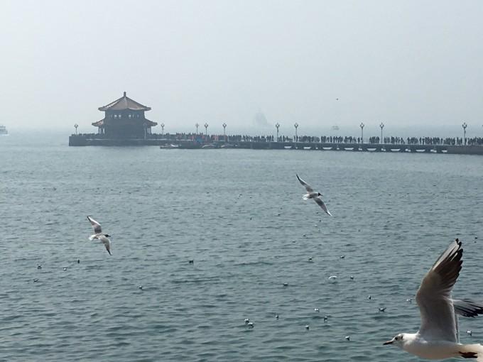 青岛栈桥,海底世界