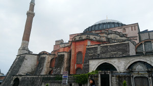 伊斯坦布尔,流浪狗不再流浪