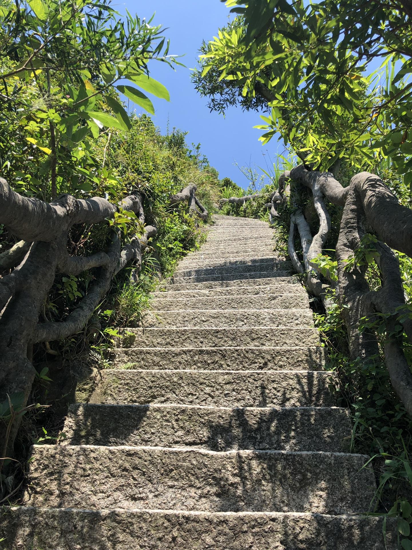 梧桐山徒步之~仙湖植物园到小梧桐