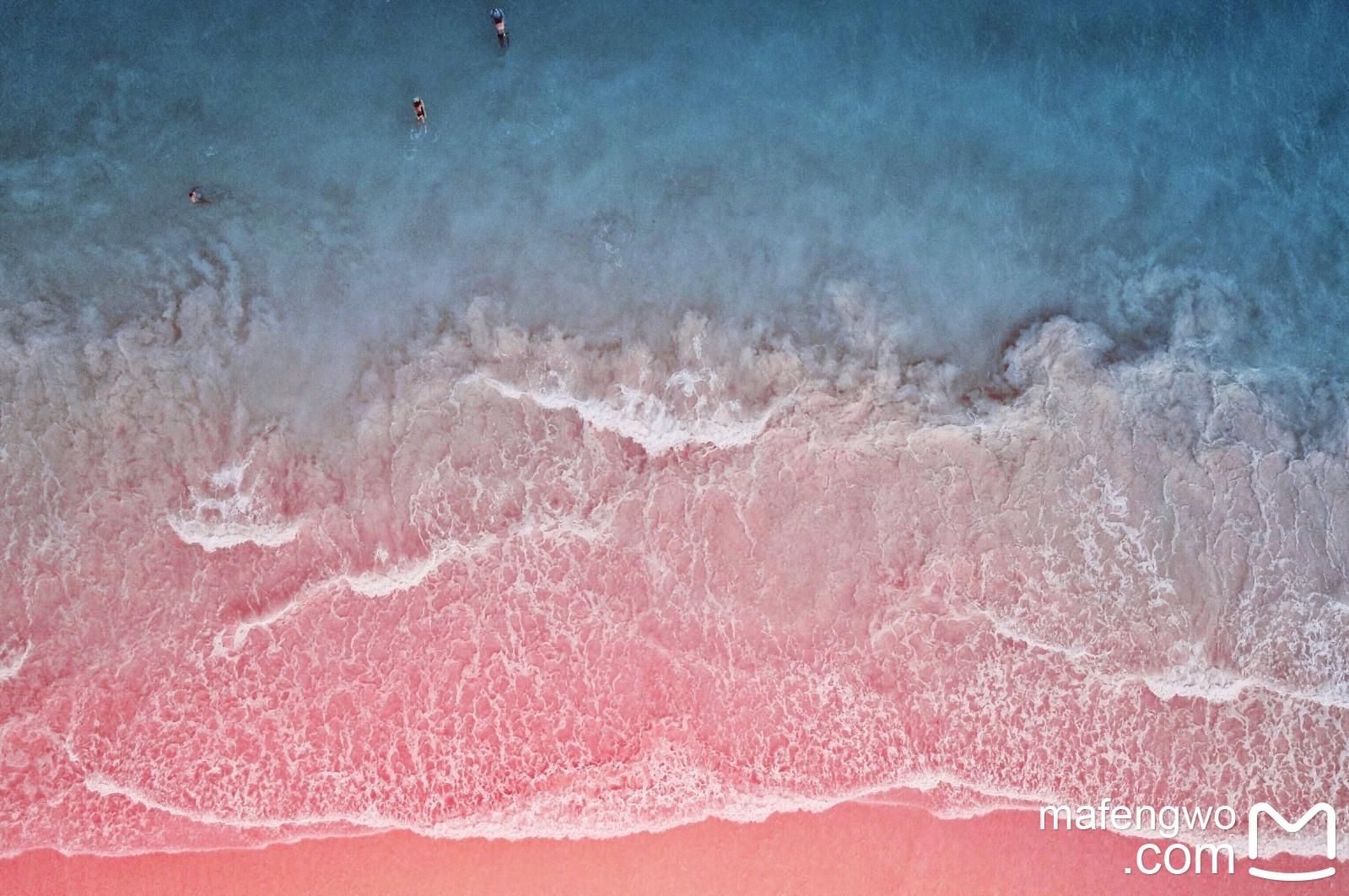 【KEMODO】科莫多国家公园——巴厘岛旁的小众景点,除了粉色沙滩旁的史前怪兽,还能看什么?_游记