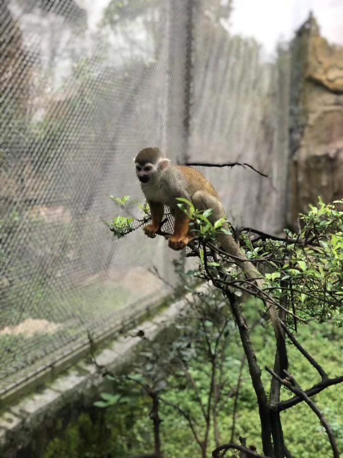 13-4.14温州动物园