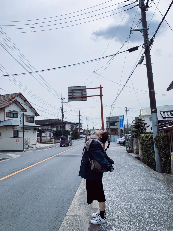 大阪京都奈良8晚7日游 你关心的问题回答篇