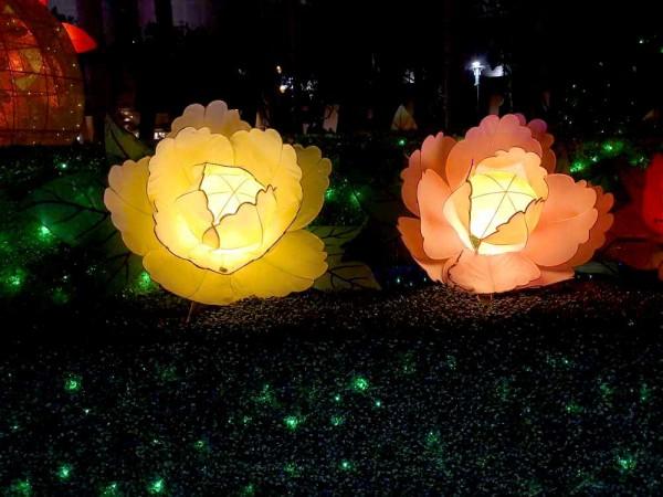 【原创】花开富贵迎猪年,彩灯闪烁庆新春——香港花灯