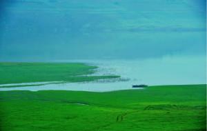 """【辽宁图片】好一个绿江,好一片""""绿"""""""