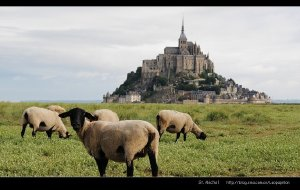【诺曼底图片】小豹子迷失在法国--圣米歇尔山的日与夜