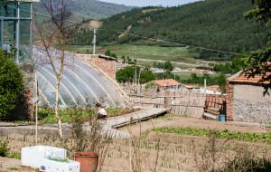 祁连美食-田园农庄