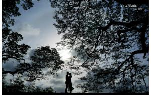【科伦坡图片】兰卡日记。贰零壹叁年柒月,晴。