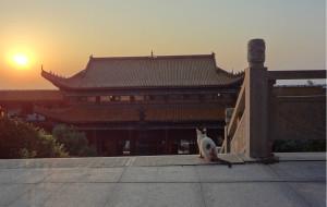 """【株洲图片】在株洲上林寺的七日七夜--我的""""打七""""日记"""