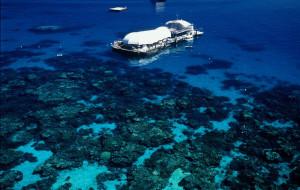 【凯恩斯图片】在南半球生活的日子里(澳新凯12日)——澳大利亚之凯恩斯(大堡礁)