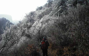 【绩溪图片】2010年冬天 徽杭古道+清凉峰(照片是朋友拍的)