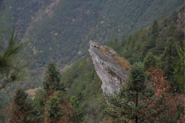 雨中徒步反穿平阳晓坑满田风景区-------明王峰,雁池