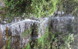 【芷江图片】清明雨下的三道坑
