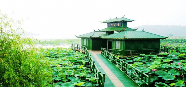 长河—金莲湾
