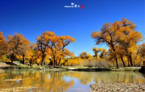 【内蒙古图片】额济纳旗, 如果你是我的传说