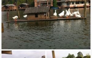 深圳娱乐-观澜山水田园旅游文化园