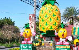 冲绳娱乐-名护菠萝园