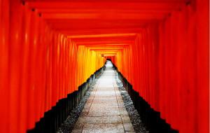 【京都图片】古都 の 色(日本关西地区自由行必备手册)