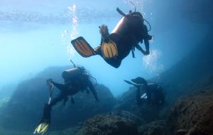 宿雾娱乐-Fun & Sun Dive & Travel