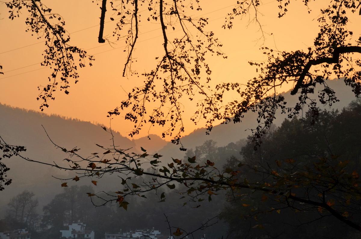 秋季婺源,从石城到长溪,是摄影爱好者和驴子们的节日。满山的红叶,晨雾,黑瓦白墙的村庄,构成了一幅幅优美的画面。这个时候,同时也是户外爱好者走出城市,来到乡野,欣赏秋色的季节。爱好自然,喜欢秋高气爽,欣赏满山红叶,走一走铺满落叶的古驿道,看看古驿道两边的红叶,走进深山里面的古村落。 司令组织了这次的红叶之旅。从15号星期五晚8点到17号晚9点,我们经历了菊径、石城、长溪、妙乐寺、龙感湖回到武汉。我在最后一刻赶上了司令的战车。 因为报名晚了,包车 没有了位置,开始没有跟上驴群的活动。一边期盼有人临时退出,我好