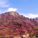 大珠山攻略图片