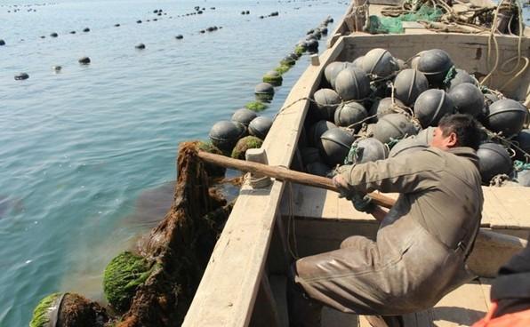 2014年清明 大连海岛长山岛 哈仙岛 五日游