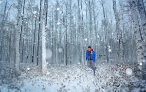 【哈尔滨图片】缪出品 - || 小缪的中国最北端-极光见证 ||