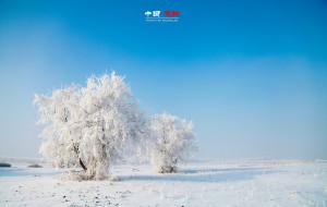 【雪乡图片】[背包出品]❄️东北,你要冬天去❄️哈尔滨+雪乡+雪谷+长白山+雾凇岛游记(附送摄影攻略)