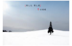 【钏路市图片】那么北,那么美。。。北海道,冬