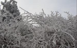 【岳西图片】岳西苍山冰景记录
